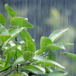 鉄骨やコンクリート建物の雨漏りしやすい傾斜柱の防水性能